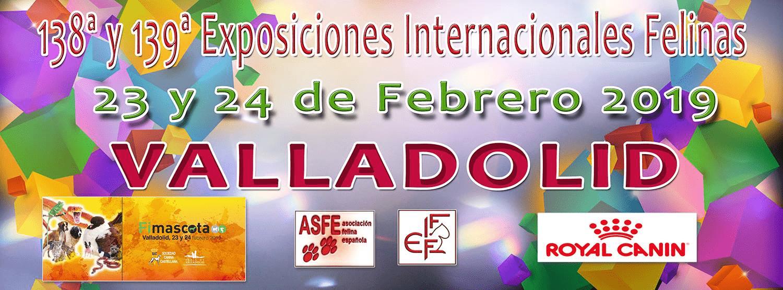 138ª y 139ª Exposiciones Internacionales Felinas Valladolid 23 y 24 de Febrero 2019