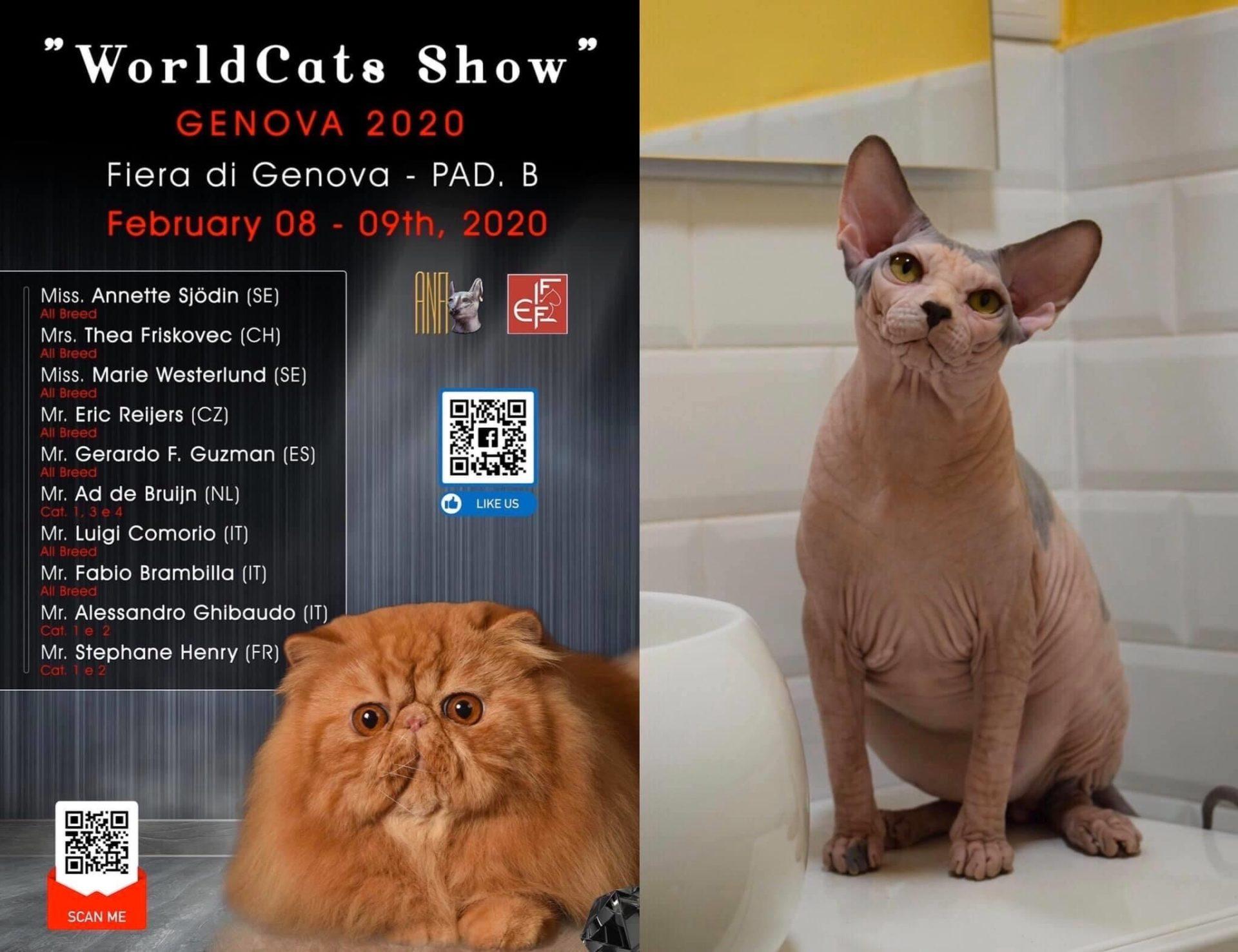 Exposición internacional de Genova 8 y 9 de febrero