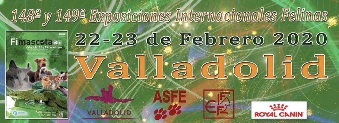 Exposición internacional de Valladolid 22 y 23 de febrero